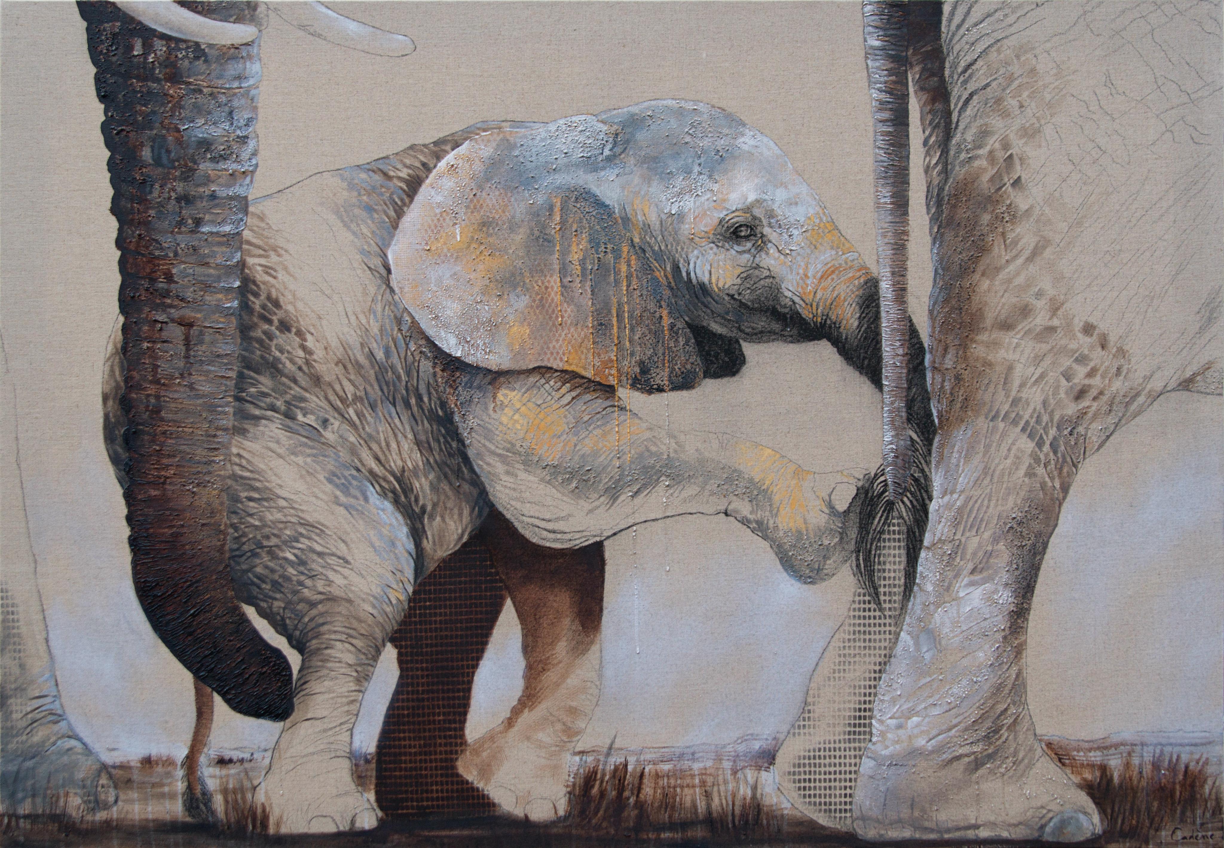 baby elephant florence cadene